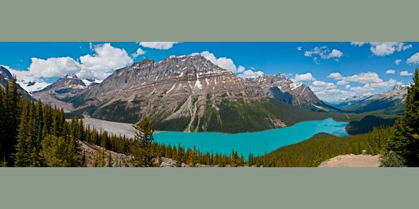 Peyto Lake And The Bow Valley